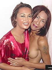 Two Asian transsexuals are fighting for one big cock
