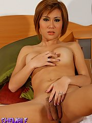 Exotical Transsexual Jen Posing Her Dick