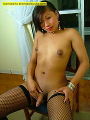 Asian transsexual in fishnets presents her majestic ass